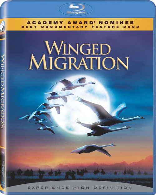 winged-migration-bluray-cover.jpg