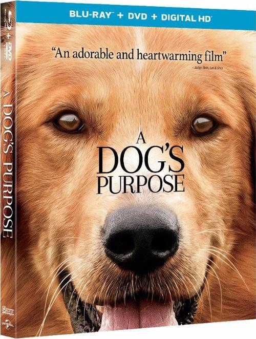 A Dog S Purpose Bluray Release Date